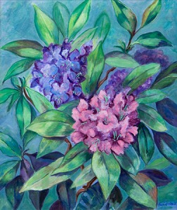 Cotterill_Rhododendron_Flat