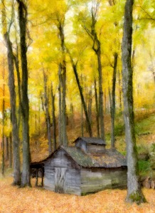 October_Morn_Painted_16x22